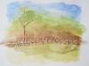 Paysage avec clôture