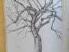 Un arbre, page 84