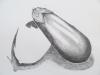«Les aubergines», crayon de graphite