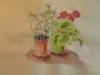 «Fleur et feuillage», pastel secs sur papier manille, 2012
